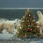 polar-bear-and-christmas-tree_1024x768_16504