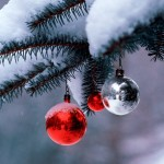 winter_snow_christmas_tree_desktop_1600x1200_wallpaper-3465
